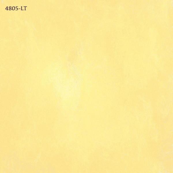 4805-Lt