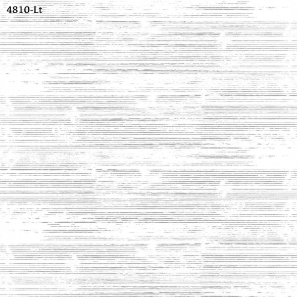 4810-Lt