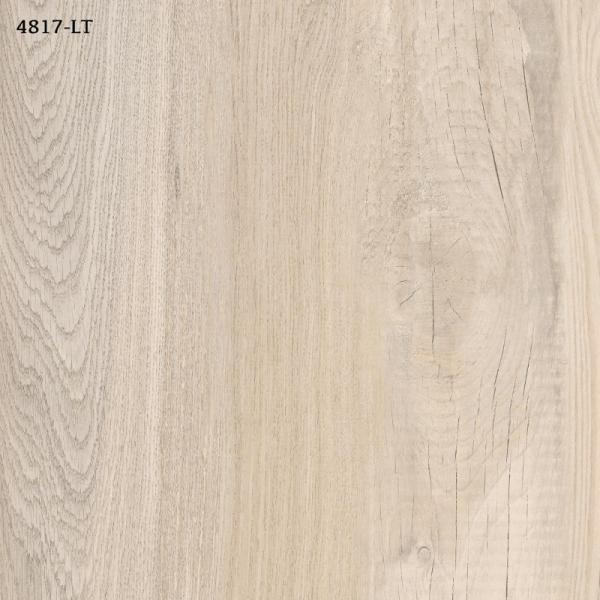 4817-LT