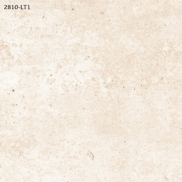 2810-LT1