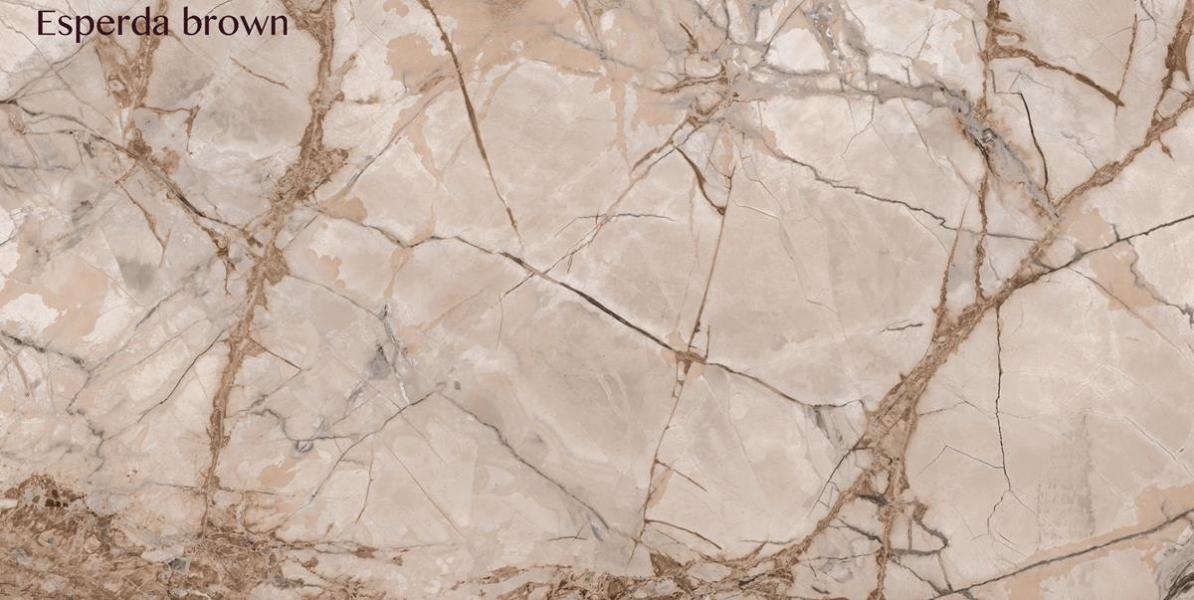 Esperda brown (DCNG1408) copy